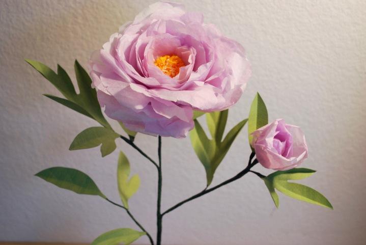 Paper Flowers: PurplePeony